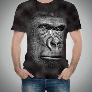 2160 Goril
